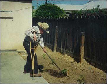 papa_tomatoes_1989_crop1