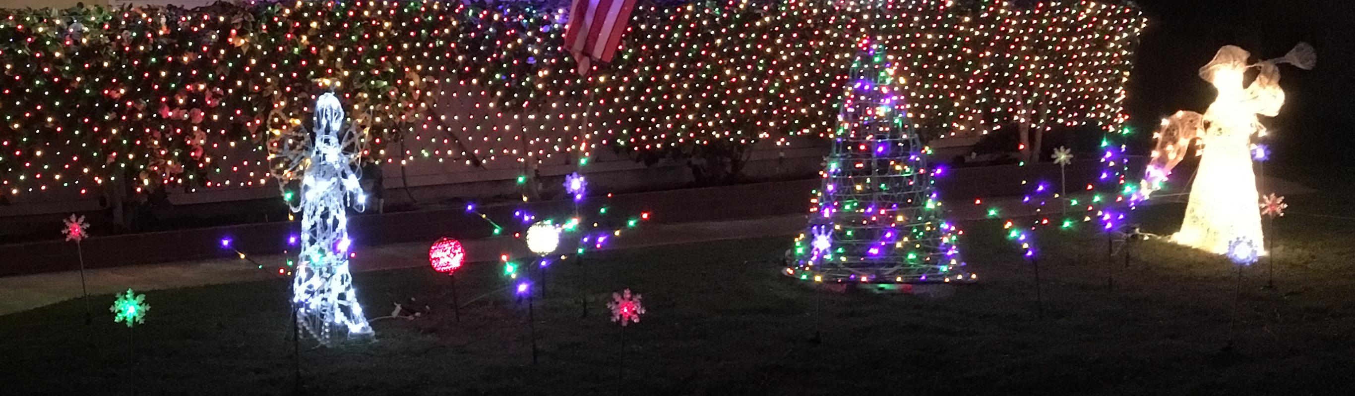 Christmas_Lawn_2018-12-07 a